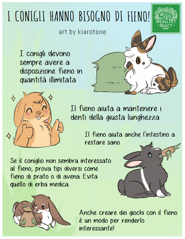 I conigli hanno bisogno di fieno