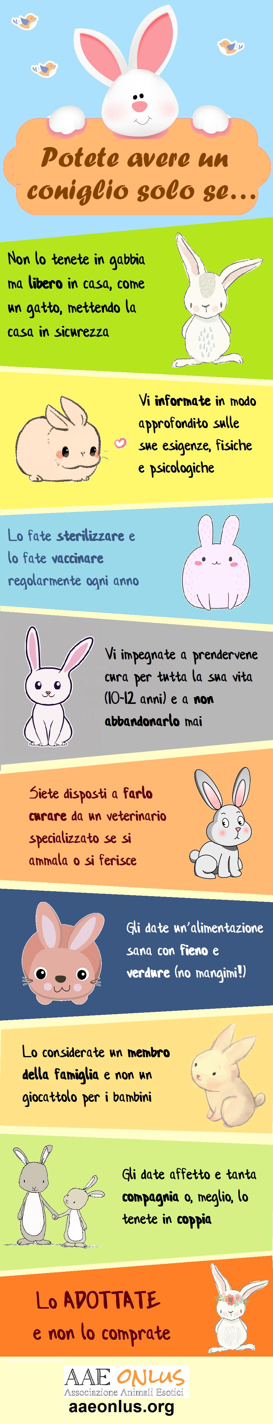 potete avere un coniglio se